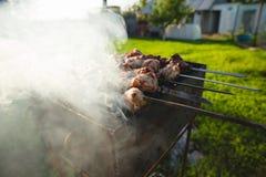 Kebab Shish на протыкальниках Стоковые Фото