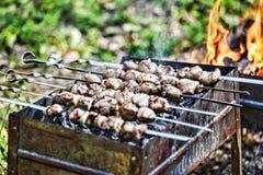 Kebab Shish, партия BBQ, гриль, есть внешнюю концепцию пикник, конец-вверх Стоковое фото RF