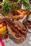 Kebab skewer with decoration in Russian style Royalty Free Stock Photo