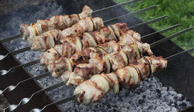 Kebab on a skewers (barbecue time) Stock Photos