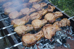 Kebab on skewers in smoke sizzle on the grill. Meat on burning coals royalty free stock photo