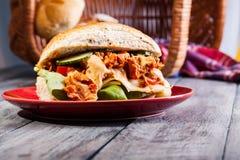 Kebab smörgås Arkivfoton