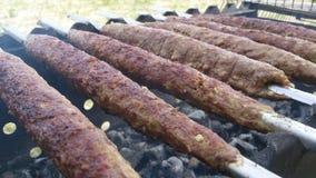 Kebab sottile Fotografie Stock Libere da Diritti