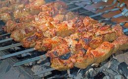 Kebab sugli spiedi immagine stock