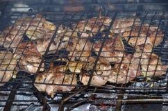 Kebab sulla griglia Fotografia Stock