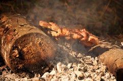 Kebab sur l'incendie Photographie stock libre de droits