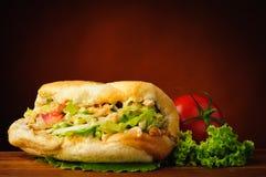 Kebab turco Fotografie Stock