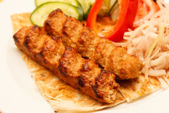 Kebab with vegetables Stock Image