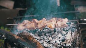 Kebab wird auf dem Grill in der Waldzeitlupe gekocht stock footage