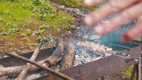 Kebab wird auf dem Grill im Wald gekocht stock video