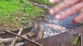 Kebab wird auf dem Grill im Wald gekocht stock video footage