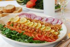 Kebab y Raki turcos Foto de archivo