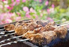 Kebaben lagas mat på en grillfest Royaltyfri Bild