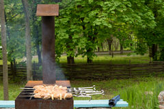 Kebaber som lagar mat på en grillfest i skogsmark Arkivbilder