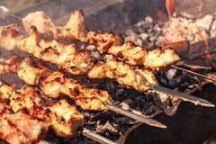 Kebabs στον καπνό σχαρών Στοκ εικόνα με δικαίωμα ελεύθερης χρήσης