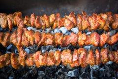 Kebabs зажарило над углем стоковое изображение