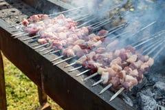 Kebabs овечки жаркого стоковое изображение