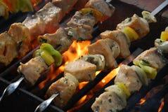 kebabs σολομός Στοκ εικόνες με δικαίωμα ελεύθερης χρήσης