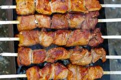 kebabs Fotografia Stock Libera da Diritti