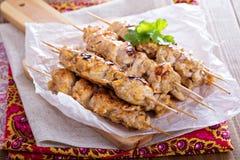 Κοτόπουλο kebabs με το μαρινάρισμα γιαουρτιού Στοκ εικόνα με δικαίωμα ελεύθερης χρήσης