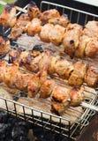 Kebabs asados a la parrilla del shashlik en el carbón de leña Foto de archivo libre de regalías