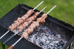 Kebabs for barbecue summer time on the nature royalty free stock photo