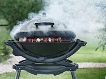 Kebabs bij de Rokende Openluchtgrill Stock Afbeeldingen