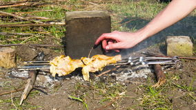 Kebabs with Chicken Are Cooked On The Fire on the Nature. Time Lapse stock footage