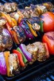 Kebabs da galinha e da pimenta que cozinham lentamente Imagens de Stock