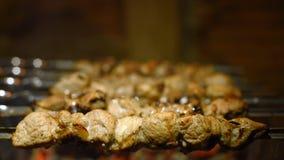 Kebabs de la asación en la parrilla almacen de video