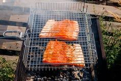 Kebabs de los pescados de los salmones que asan a la parrilla en la naturaleza Foto de archivo libre de regalías