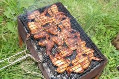 Kebabs de Shish de una gallina Fotografía de archivo