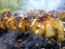 Kebabs deliciosos Fotografía de archivo libre de regalías