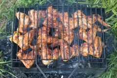 Kebabs in the forest, in nature. Roast meat Stock Image