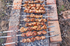 Kebabs on a grill. Royalty Free Stock Photos