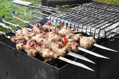 Kebabs on grill Royalty Free Stock Photos