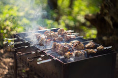 Kebabs on the grill. Tasty charcoal barbecue with smoke Stock Photos