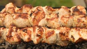 Kebabs na grillu zbiory wideo