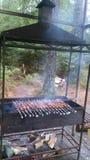 Kebabs på gallret Fotografering för Bildbyråer