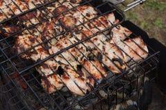 Kebabs Shish, крыла цыпленка Стоковая Фотография