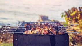 Kebabs Shish на протыкальниках, который нужно зажарить в барбекю на предпосылке озера в природе Стоковые Изображения RF