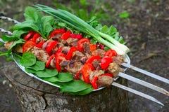Kebabs sur le gril Image libre de droits