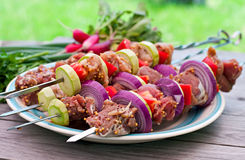 Kebabs and vegetables Stock Photos