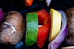 Kebabs vegetales que asan a la parrilla cerca para arriba Fotografía de archivo libre de regalías