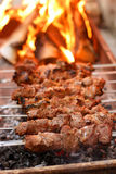 kebabshish Arkivbild