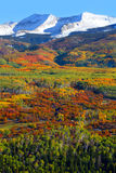 Kebler pass in autumn Stock Photography