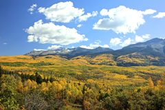 Kebler Pass Fall Colors Royalty Free Stock Photos