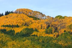Keblerpas - Autumn Scenery in Rocky Mountains van Colorado Stock Foto