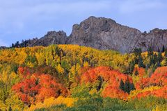 Keblerpas - Autumn Scenery in Rocky Mountains van Colorado Stock Fotografie
