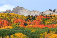 Keblerpas - Autumn Scenery in Rocky Mountains van Colorado Royalty-vrije Stock Foto
